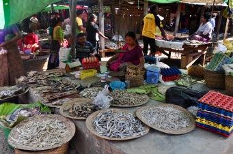 Fish markets