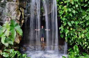 Botanical garden's mini waterfall