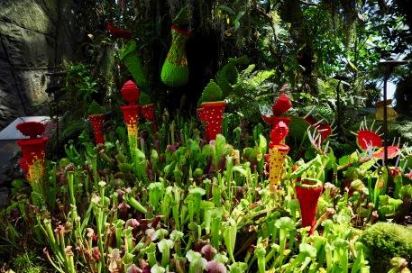 Part lego, part real carnivorous plants!