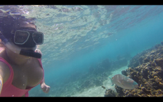 Me and a Parrotfish!
