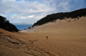 The only one in the sand dunes!