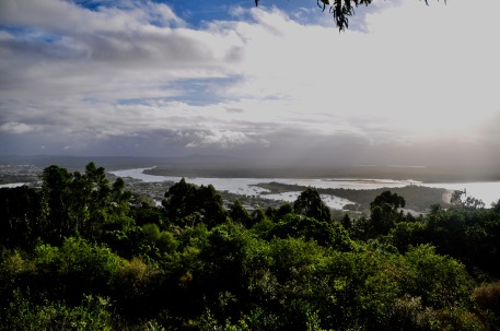 Laguna lookout point - Noosa