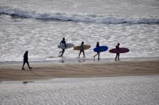 Surfers of Byron Bay