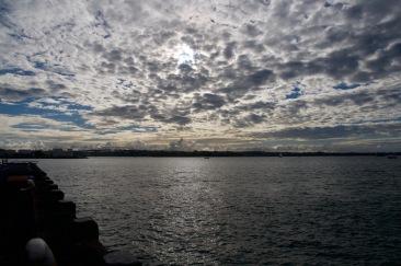 Auckland docks