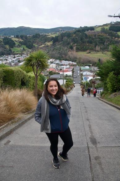 Tallest residential street, Dunedin