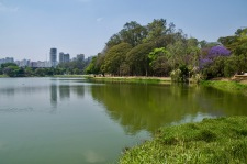 Sao Paolo from Iberapuera park