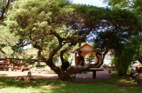 Japanese Gardens, Encarnación