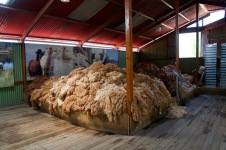 Mundo Alpaca - wool