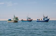 Paracas port