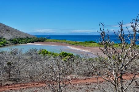 Saltwater lagoon, Rabida island