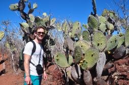 Cactus landscape of Rabida