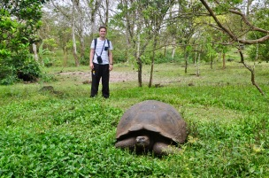Giant tortoise with dave to scale