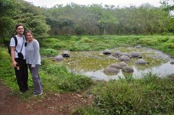 Us and wild tortoises!