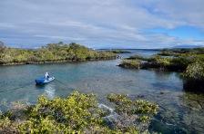 Punto Moreno coastline